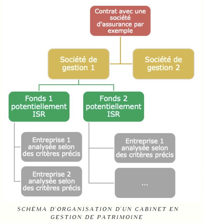 Organisation gestion de patrimoine
